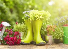 Concours paysage de vos jardins